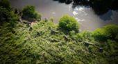 Defending Elephants in Africa