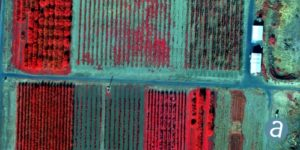multispectral imagery